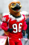 Swoop, the Utah mascot